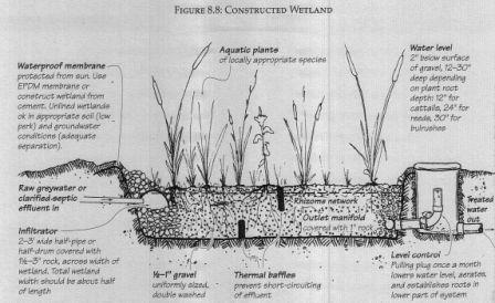 Constructed Wetland Greywater System